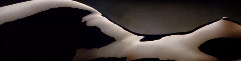Parejas Liberales de Asturias - La luna de Canuit